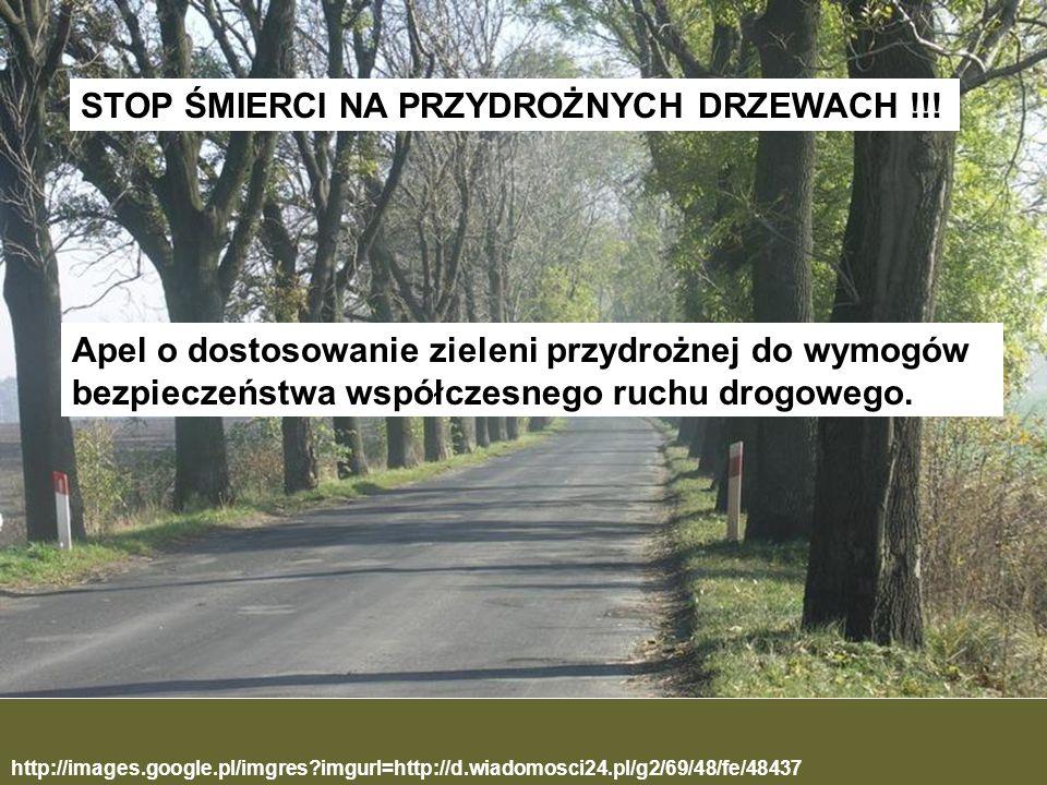 STOP ŚMIERCI NA PRZYDROŻNYCH DRZEWACH !!!