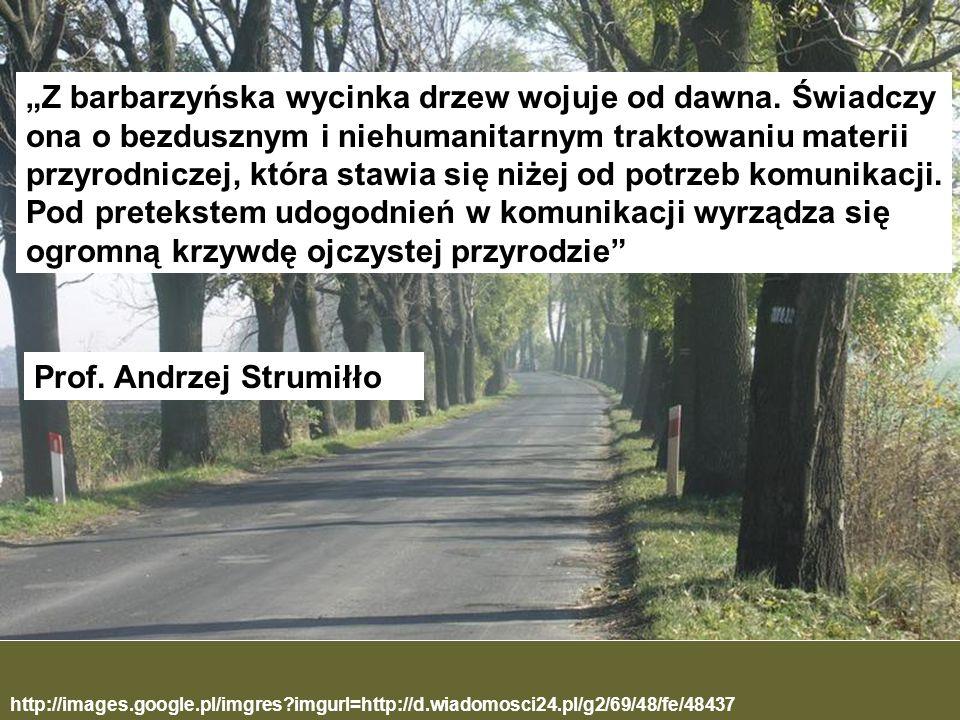 Prof. Andrzej Strumiłło