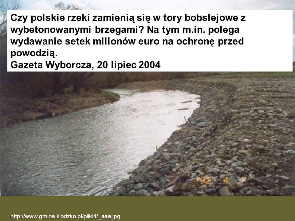 Gazeta Wyborcza, 20 lipiec 2004