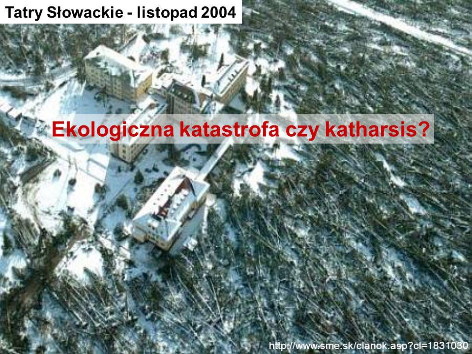 Ekologiczna katastrofa czy katharsis