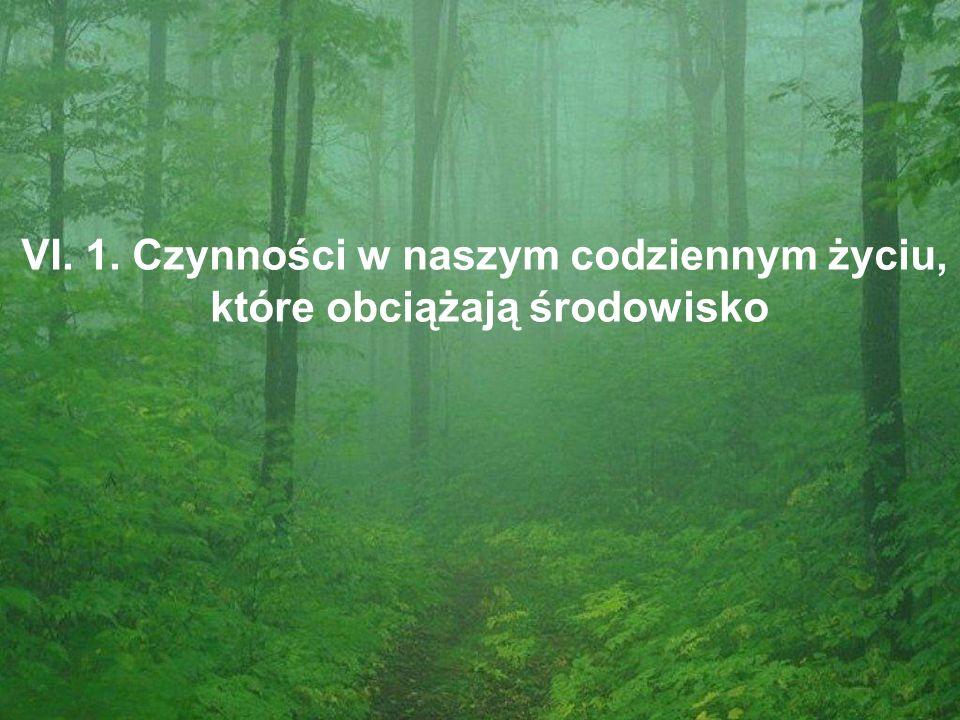 VI. 1. Czynności w naszym codziennym życiu, które obciążają środowisko