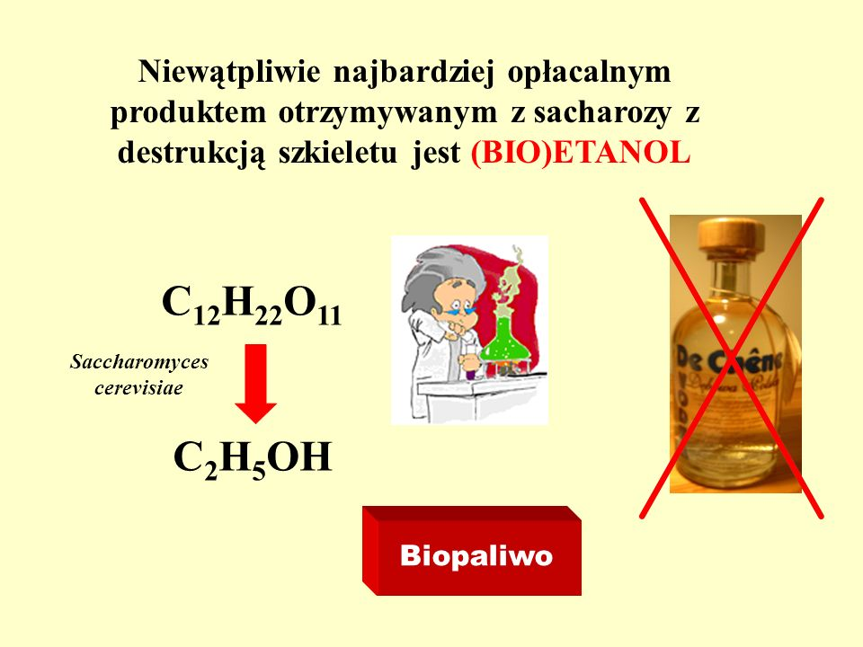 Niewątpliwie najbardziej opłacalnym produktem otrzymywanym z sacharozy z destrukcją szkieletu jest (BIO)ETANOL