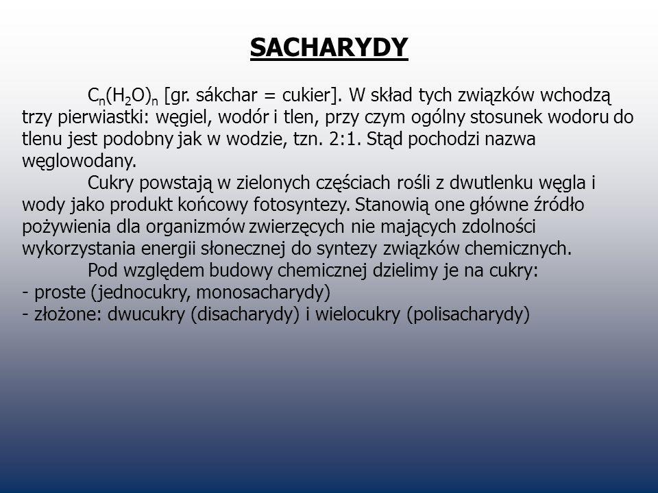 SACHARYDY