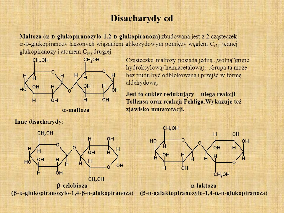 Disacharydy cd