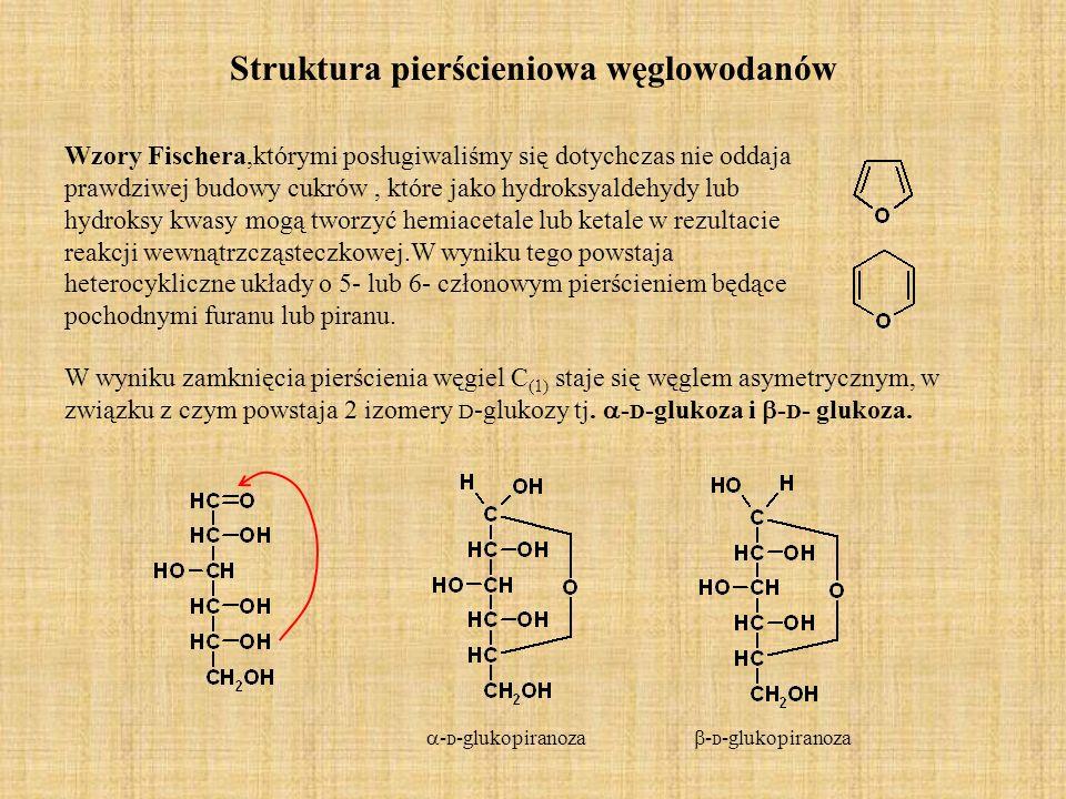 Struktura pierścieniowa węglowodanów
