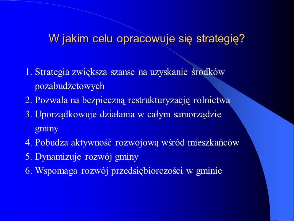 W jakim celu opracowuje się strategię