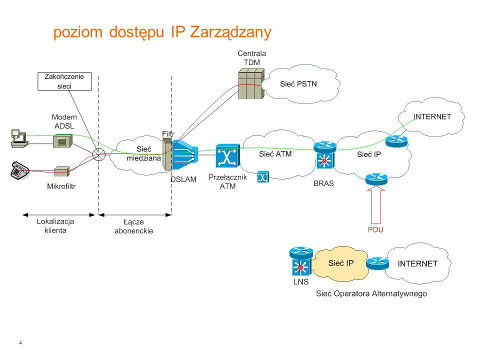 poziom dostępu IP Zarządzany