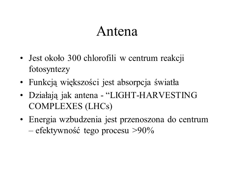 Antena Jest około 300 chlorofili w centrum reakcji fotosyntezy