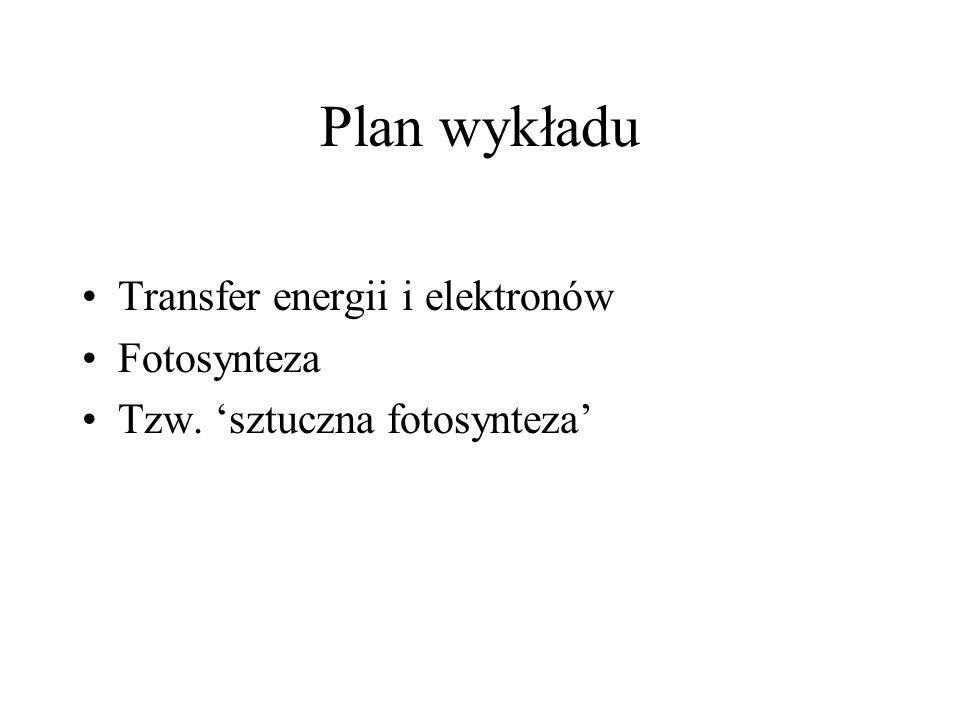 Plan wykładu Transfer energii i elektronów Fotosynteza
