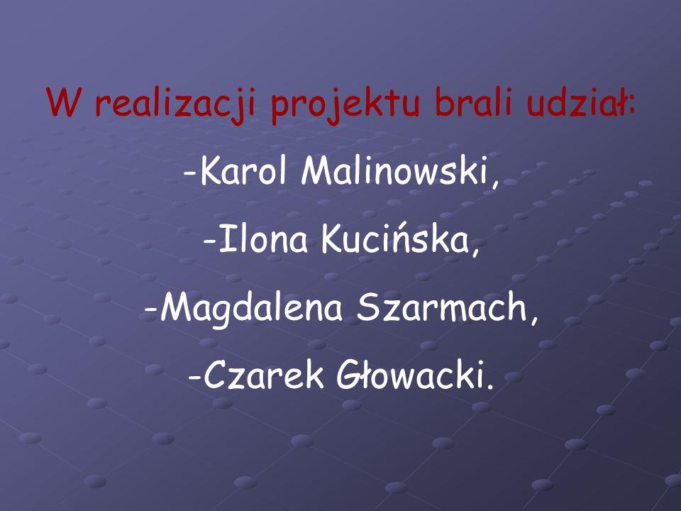 W realizacji projektu brali udział: -Karol Malinowski, -Ilona Kucińska, -Magdalena Szarmach, -Czarek Głowacki.