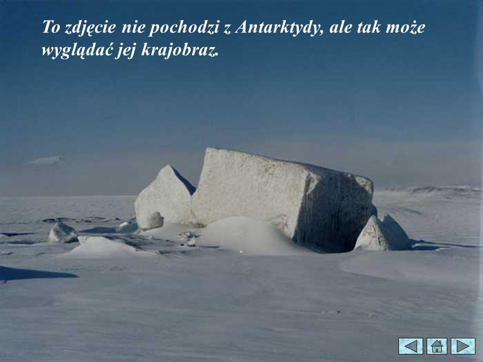 To zdjęcie nie pochodzi z Antarktydy, ale tak może wyglądać jej krajobraz.