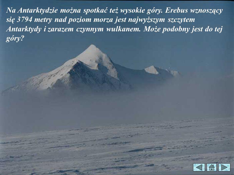 Na Antarktydzie można spotkać też wysokie góry