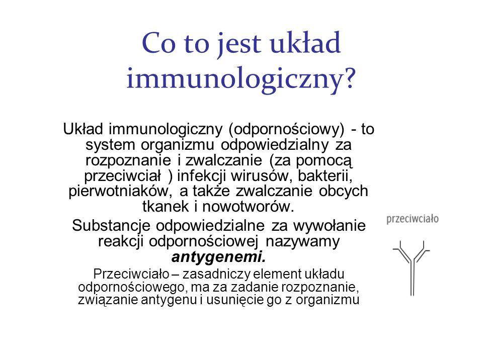Co to jest układ immunologiczny