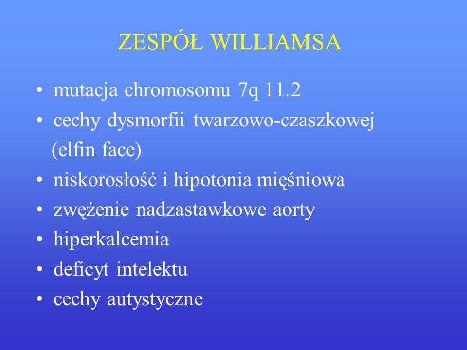 ZESPÓŁ WILLIAMSA mutacja chromosomu 7q 11.2
