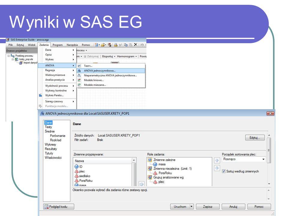 Wyniki w SAS EG