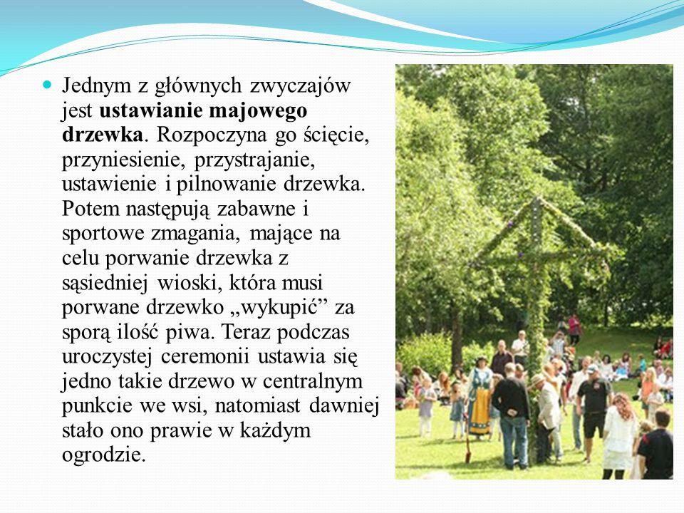 Jednym z głównych zwyczajów jest ustawianie majowego drzewka