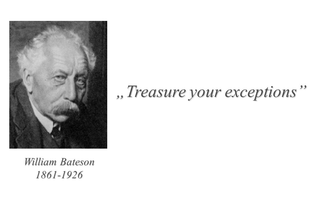 """Treasure your exceptions"