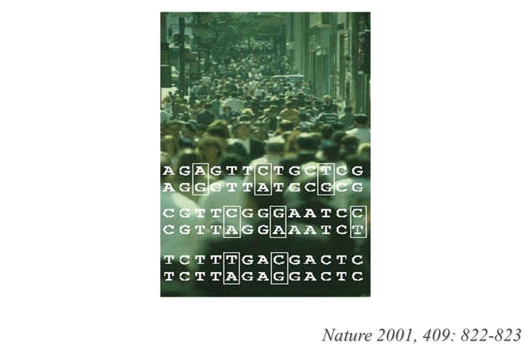 Nature 2001, 409: 822-823