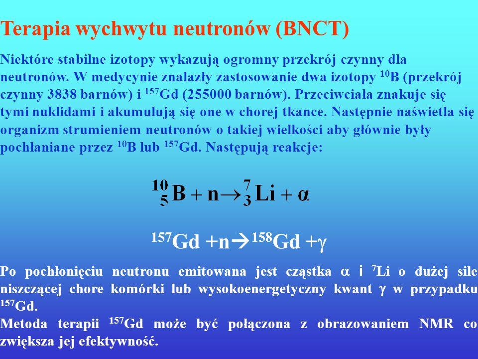 Terapia wychwytu neutronów (BNCT)