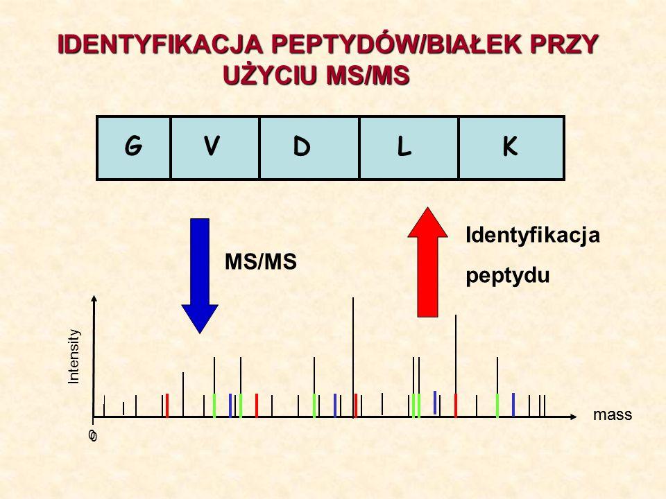 IDENTYFIKACJA PEPTYDÓW/BIAŁEK PRZY UŻYCIU MS/MS
