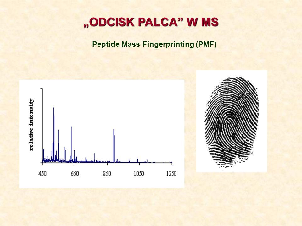 Peptide Mass Fingerprinting (PMF)