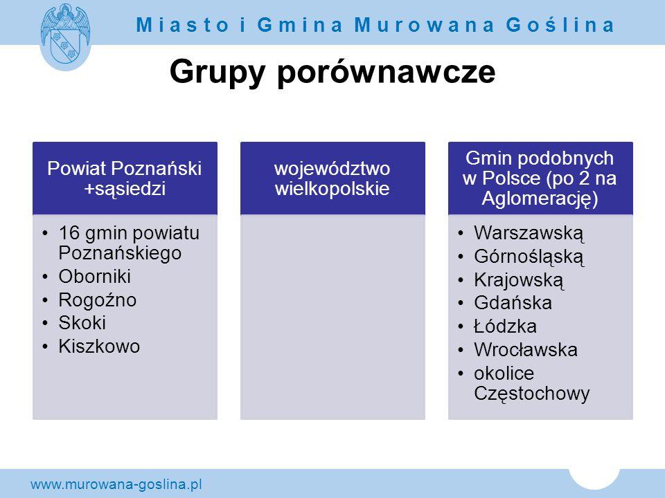 Grupy porównawcze Powiat Poznański +sąsiedzi