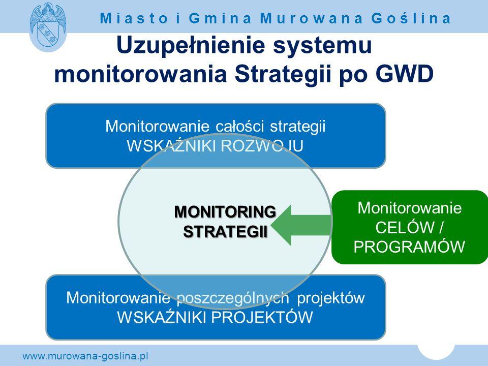 Uzupełnienie systemu monitorowania Strategii po GWD
