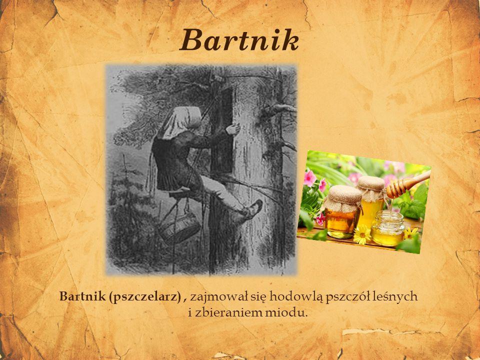 Bartnik Bartnik (pszczelarz) , zajmował się hodowlą pszczół leśnych i zbieraniem miodu.