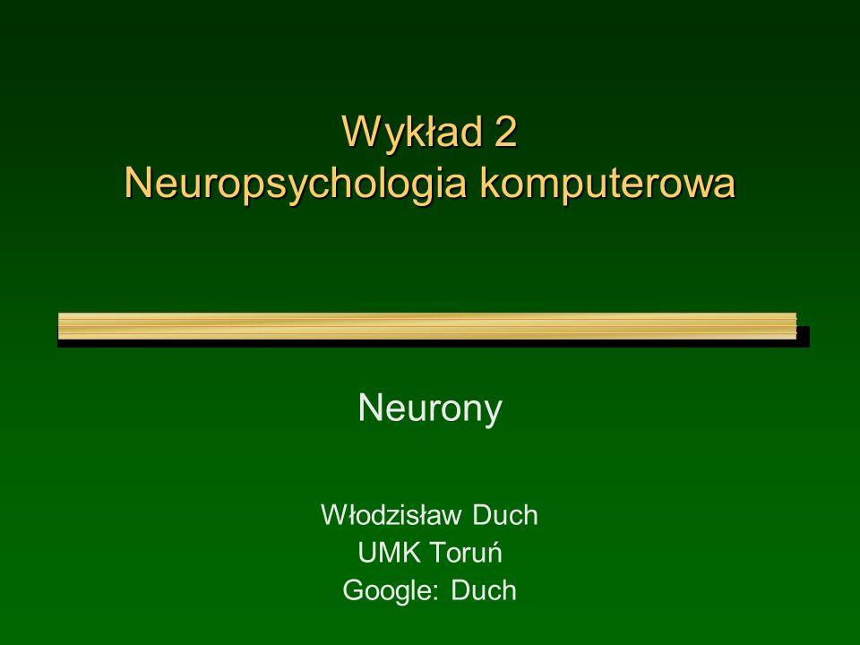Wykład 2 Neuropsychologia komputerowa