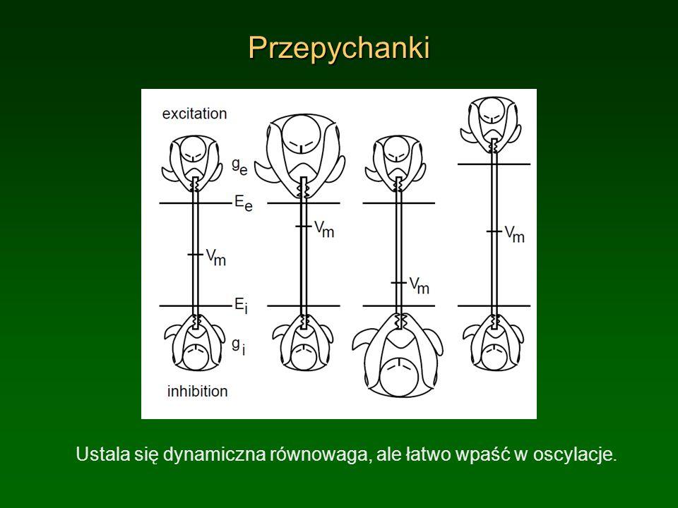 PrzepychankiUstala się dynamiczna równowaga, ale łatwo wpaść w oscylacje.