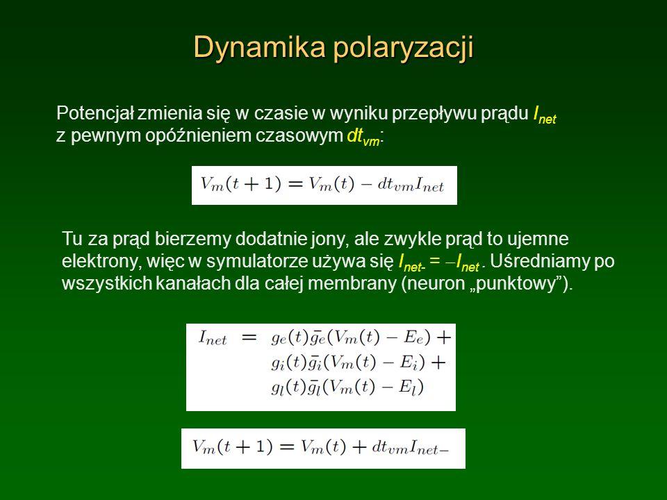 Dynamika polaryzacji Potencjał zmienia się w czasie w wyniku przepływu prądu Inet z pewnym opóźnieniem czasowym dtvm: