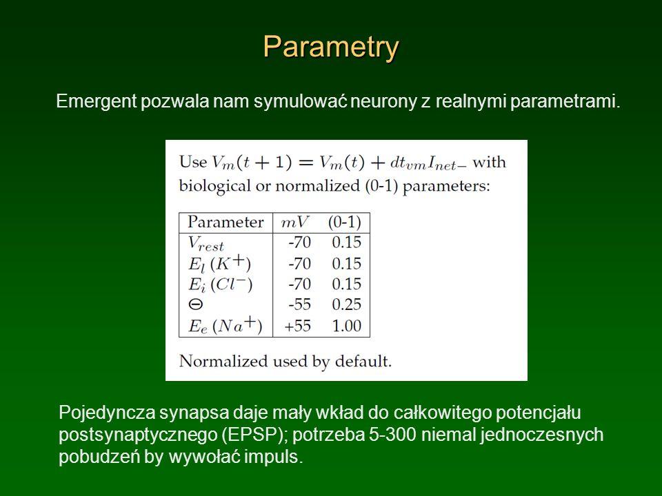 Parametry Emergent pozwala nam symulować neurony z realnymi parametrami.