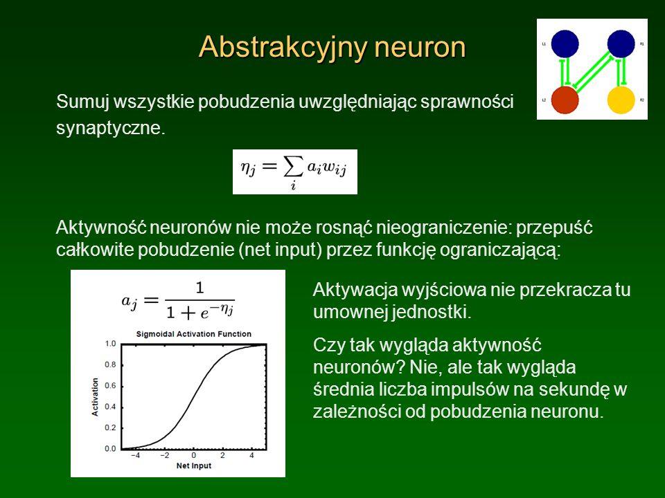 Abstrakcyjny neuronSumuj wszystkie pobudzenia uwzględniając sprawności. synaptyczne.