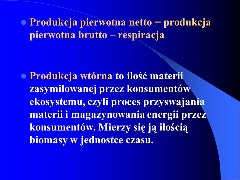 Produkcja pierwotna netto = produkcja pierwotna brutto – respiracja
