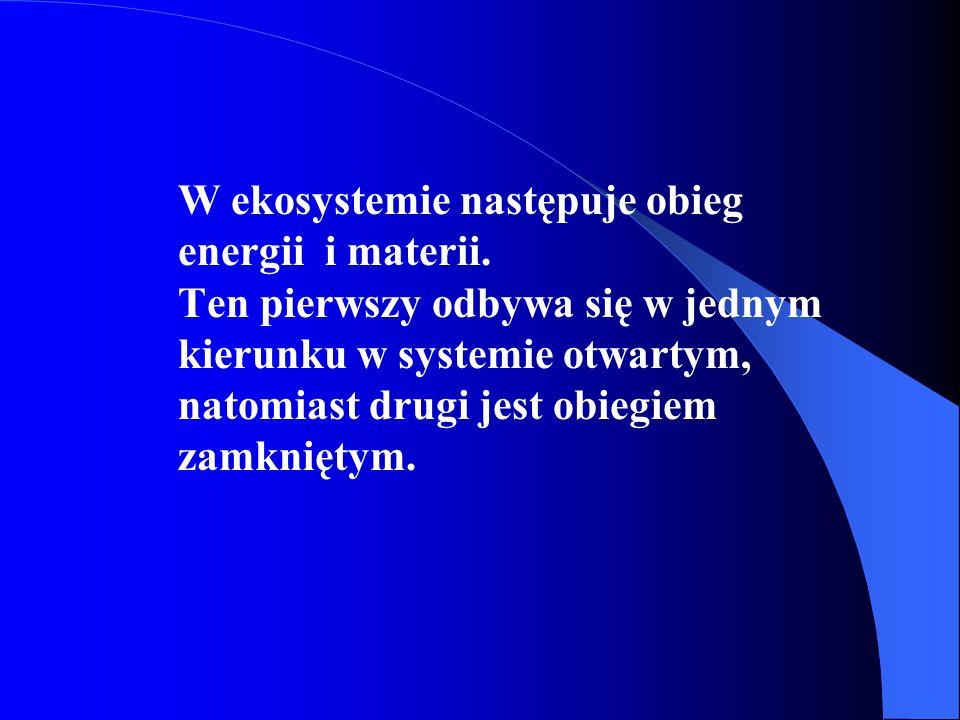 W ekosystemie następuje obieg energii i materii