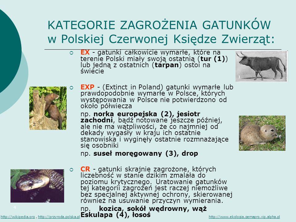 KATEGORIE ZAGROŻENIA GATUNKÓW w Polskiej Czerwonej Księdze Zwierząt: