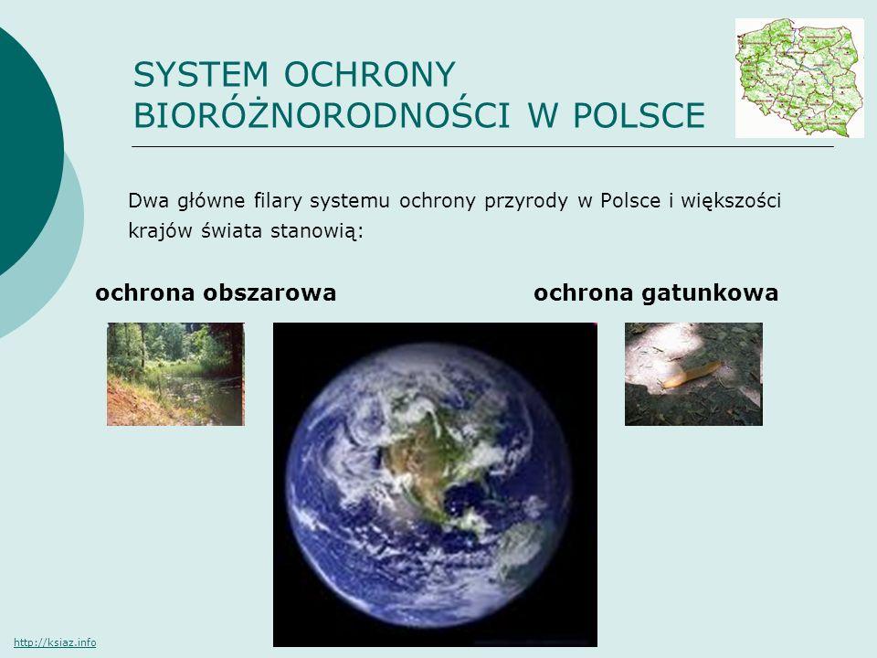 SYSTEM OCHRONY BIORÓŻNORODNOŚCI W POLSCE