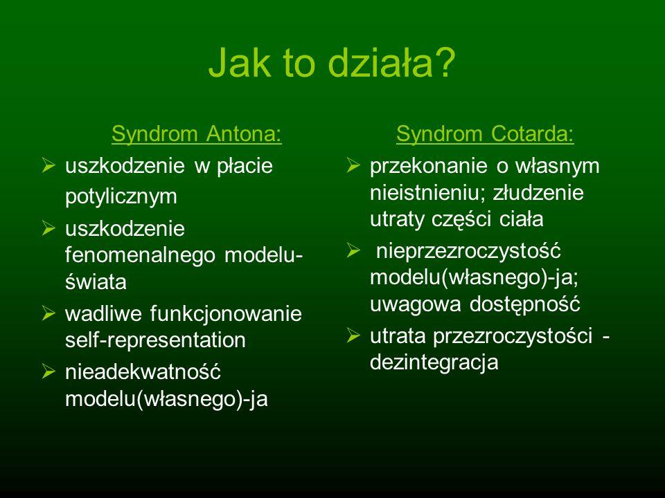 Jak to działa Syndrom Antona: uszkodzenie w płacie potylicznym