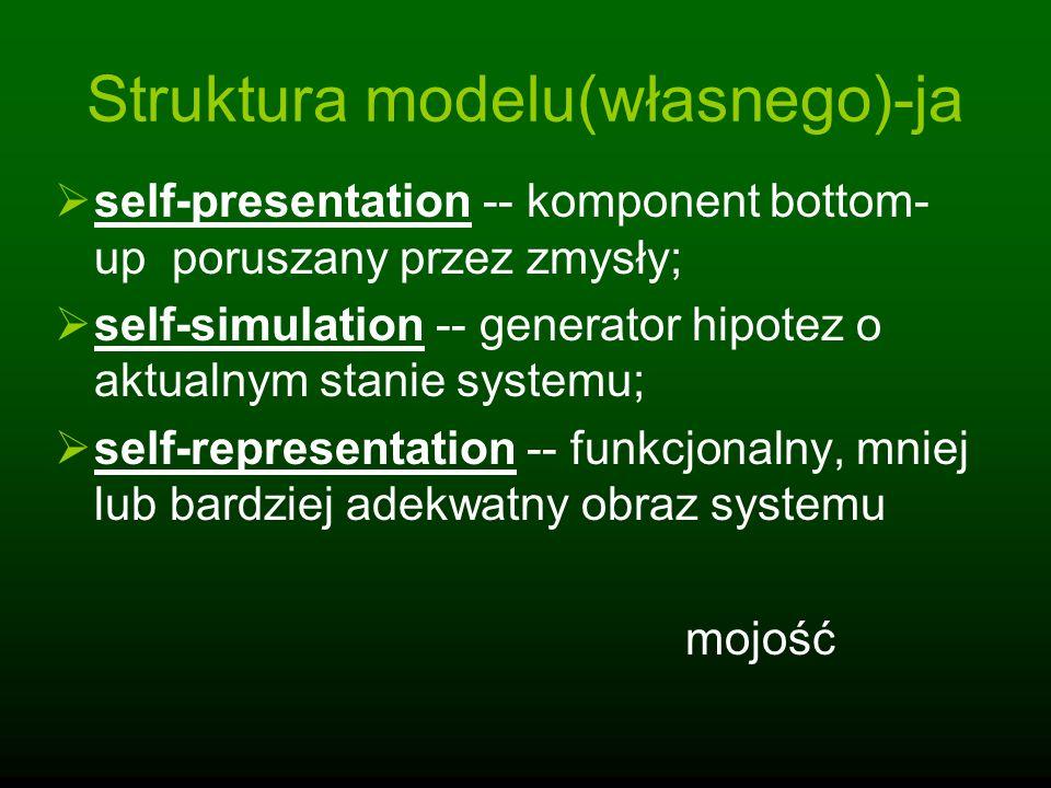 Struktura modelu(własnego)-ja