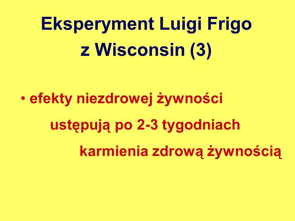 Eksperyment Luigi Frigo