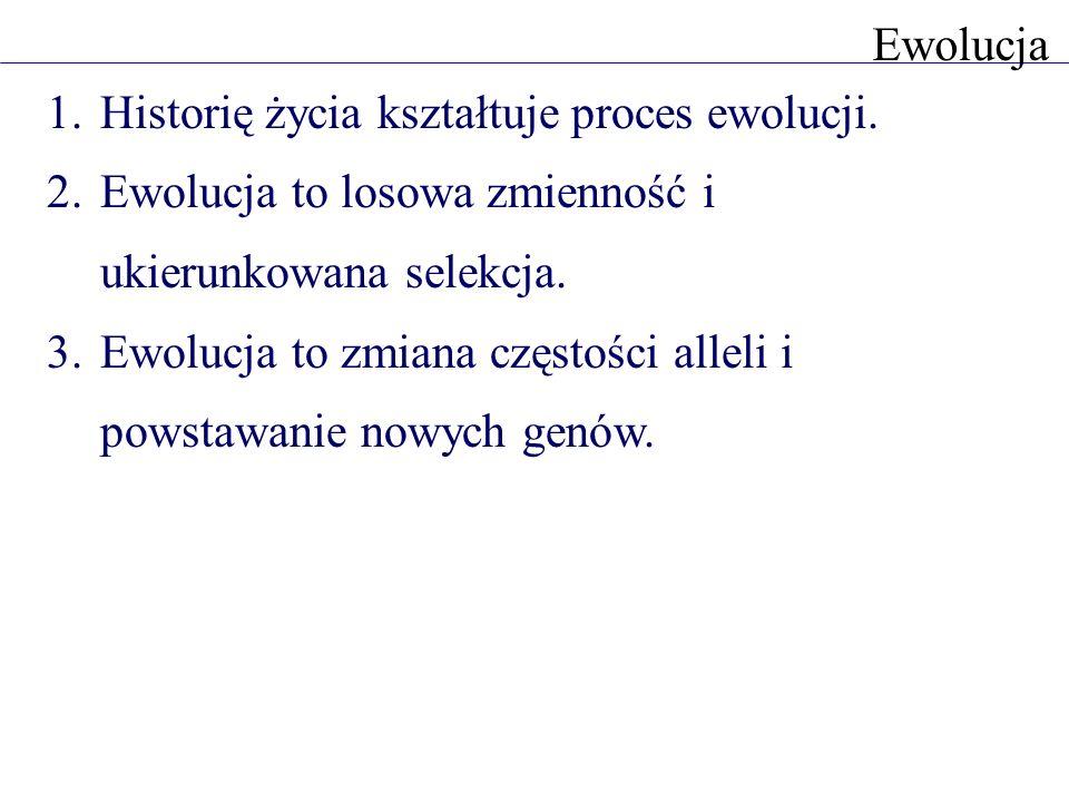 Ewolucja Historię życia kształtuje proces ewolucji. Ewolucja to losowa zmienność i ukierunkowana selekcja.