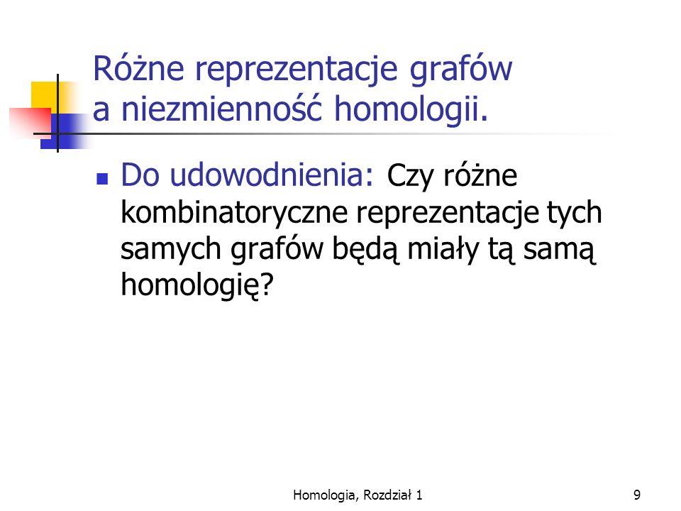 Różne reprezentacje grafów a niezmienność homologii.