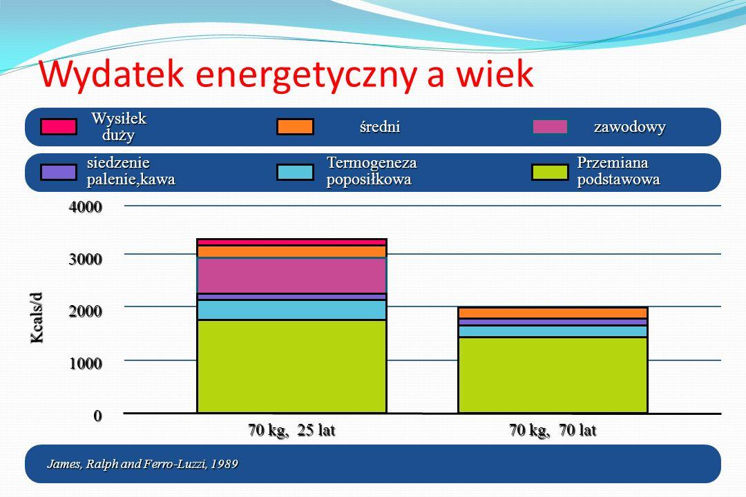 Wydatek energetyczny a wiek