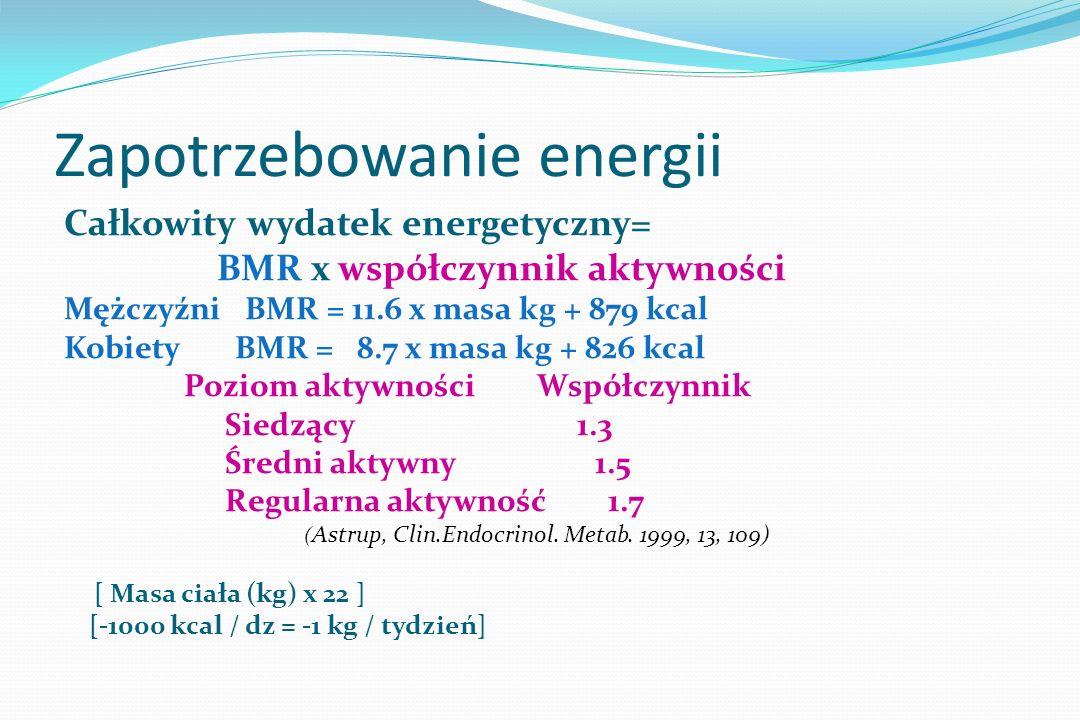 Zapotrzebowanie energii
