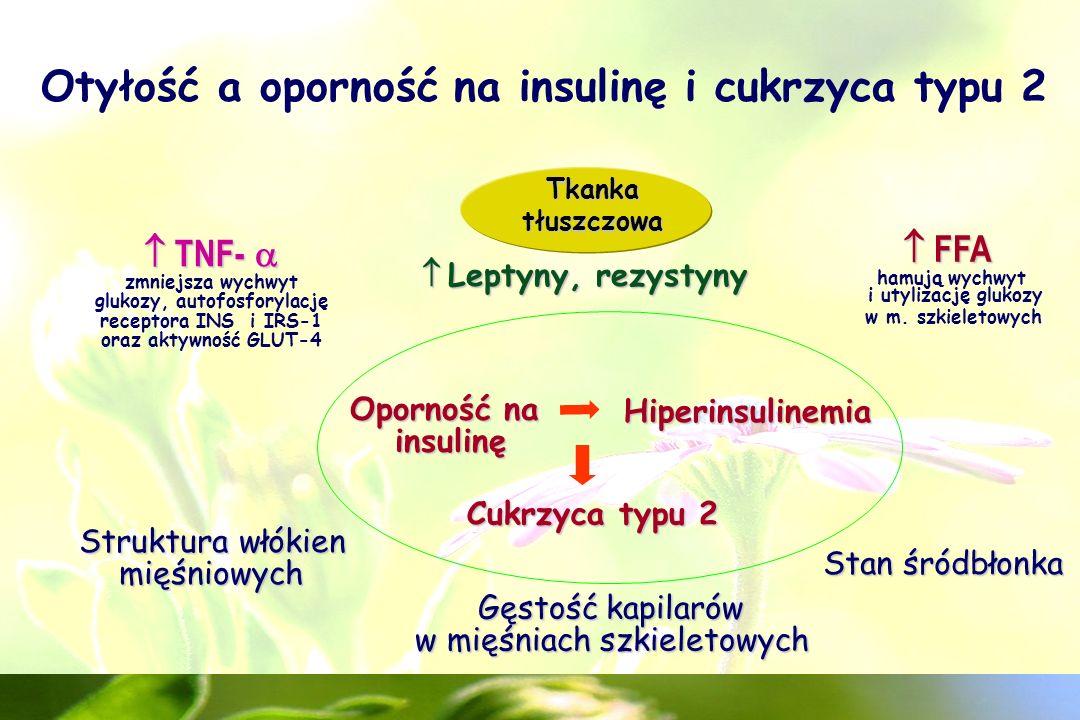Otyłość a oporność na insulinę i cukrzyca typu 2