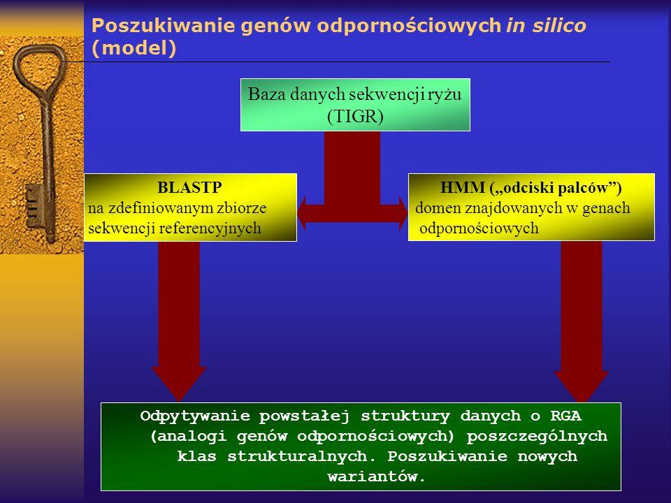 Poszukiwanie genów odpornościowych in silico (model)