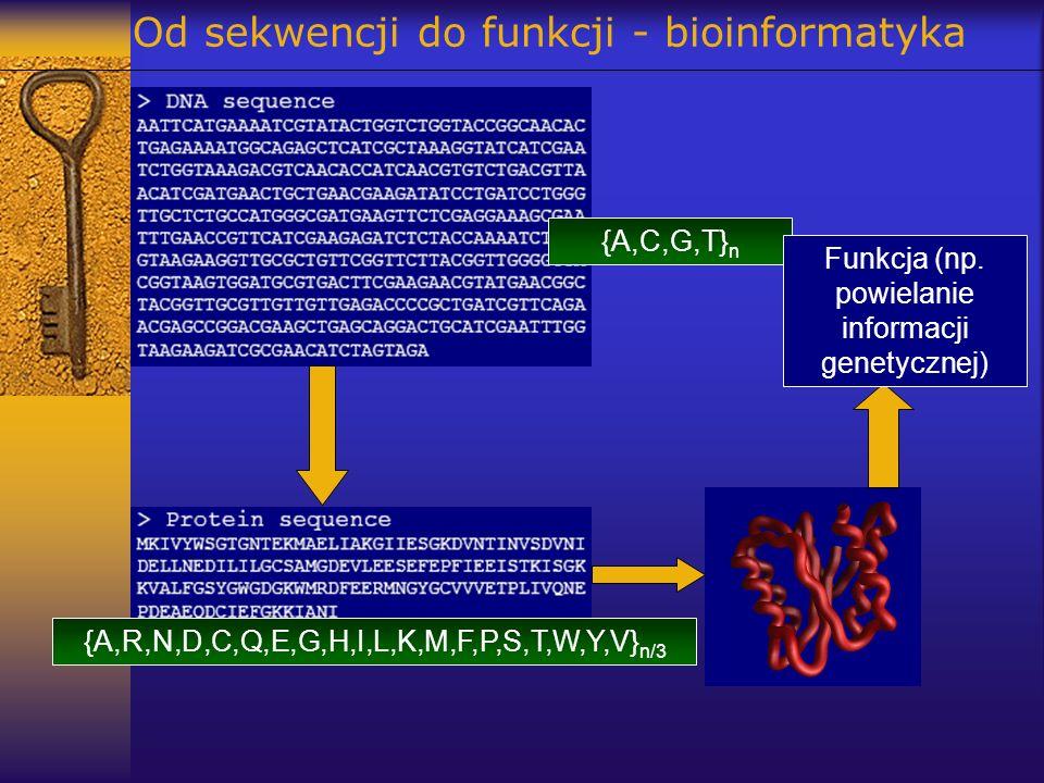 Od sekwencji do funkcji - bioinformatyka
