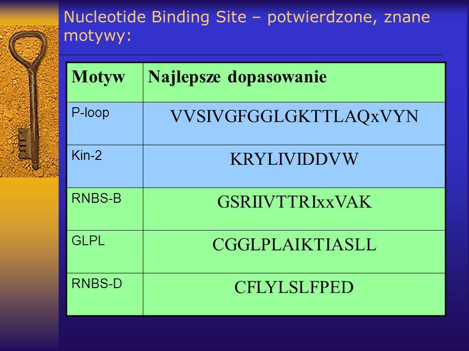 Nucleotide Binding Site – potwierdzone, znane motywy: