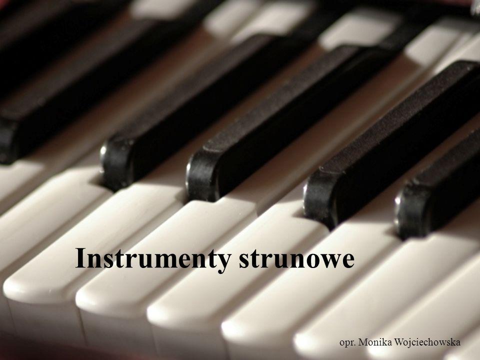 Instrumenty strunowe opr. Monika Wojciechowska