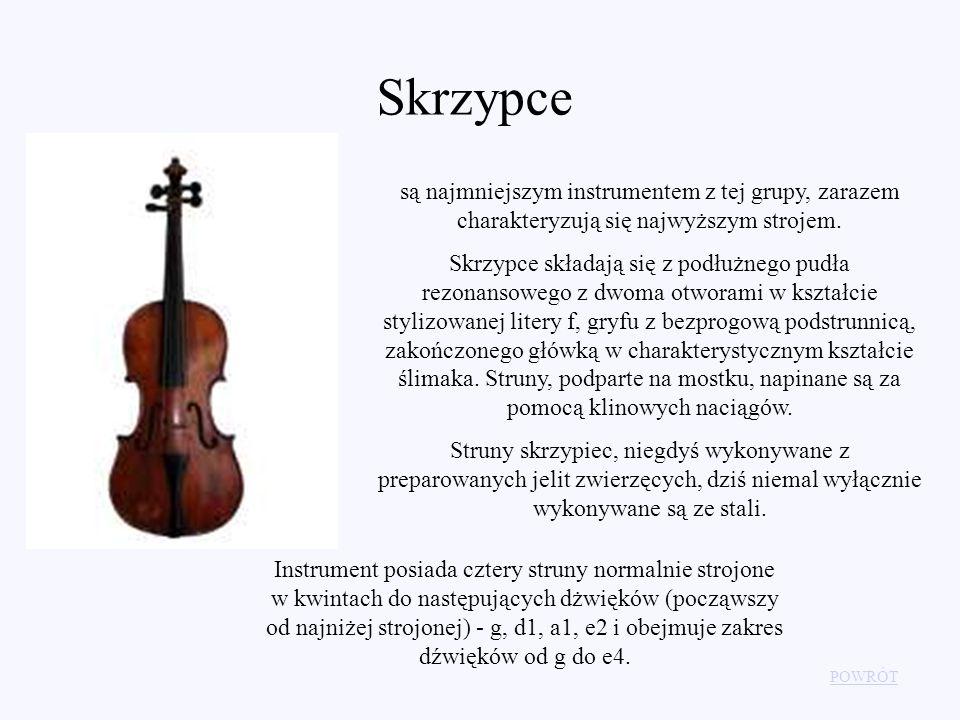 Skrzypce są najmniejszym instrumentem z tej grupy, zarazem charakteryzują się najwyższym strojem.